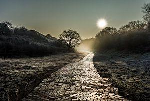Landschap Sunlight