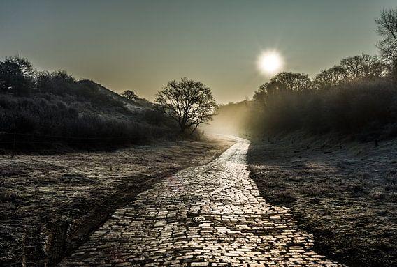 Landschap Sunlight van peter van der pol