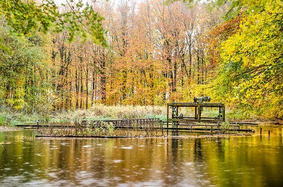 Vijver met roestige installaties in een herfstbos