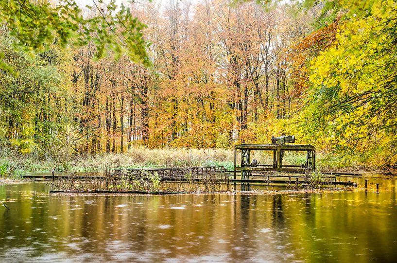 Vijver met roestige installaties in een herfstbos van Frans Blok