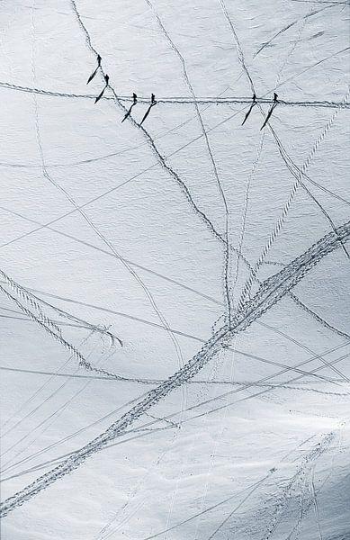 Spuren im Schnee von Menno Boermans