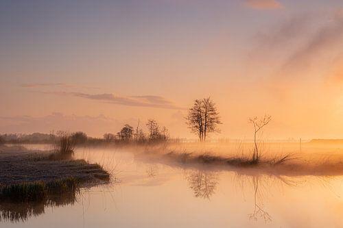 Zonsopkomst in Nationaal Park Weerribben-Wieden