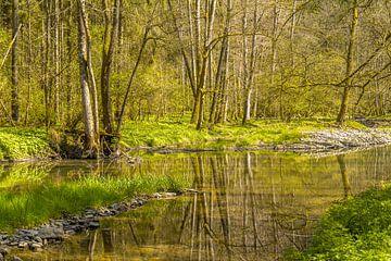 Fluß im Frühling von Achim Prill