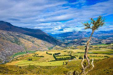 Lake County, Zuidereiland, Nieuw Zeeland van Rietje Bulthuis