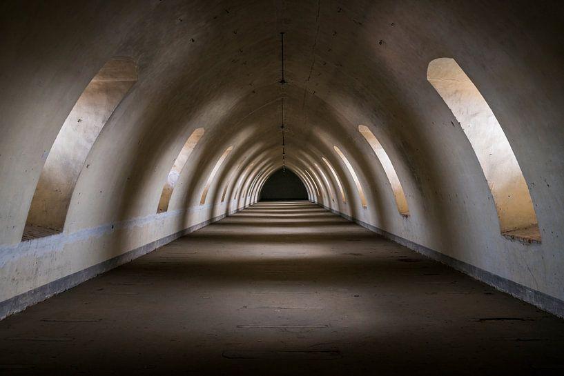 Tunnel Sombre. sur Roman Robroek