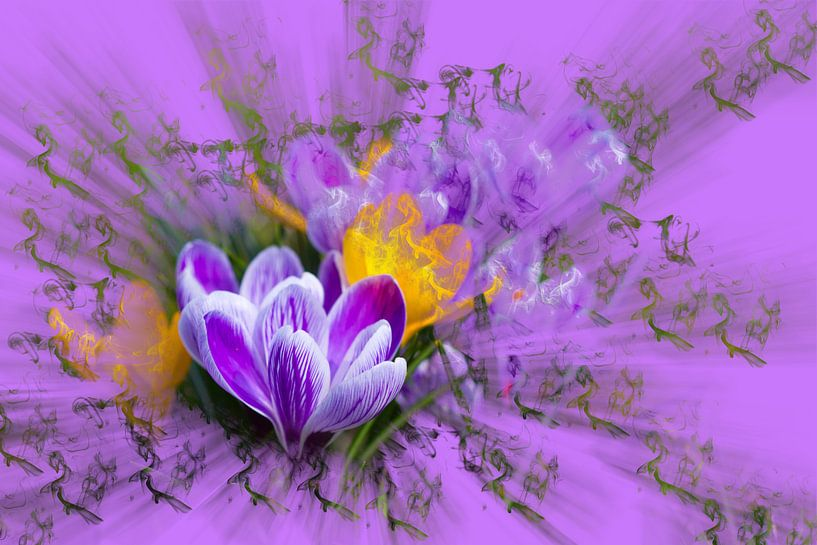 Spring is here  van Ursula Di Chito