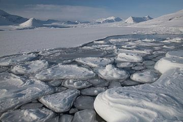 Eisschollen von Marleen Baas