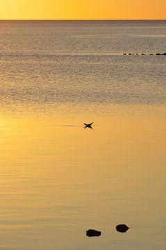 Sonnenuntergang van Angela Dölling