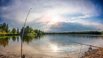 Vissen aan het meer van Günter Albers