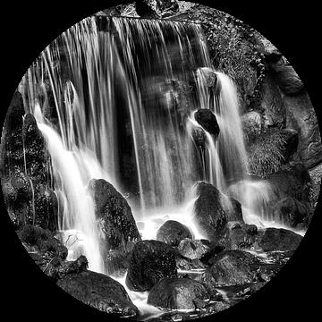 Aqua in motion van Bob Bleeker