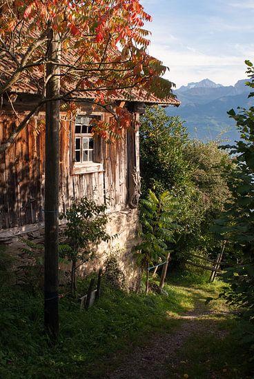 Herfstkleuren in Centraal Zwitserland van John Faber