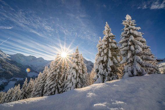 Zon en verse sneeuw in bergen van Oostenrijk