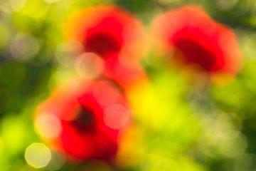 Dahlienblüte abstrakt (2) von Monika Scheurer