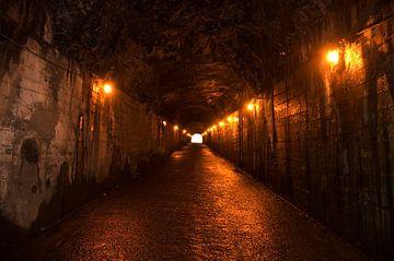 Licht aan het eind van de tunnel van Don Amaro