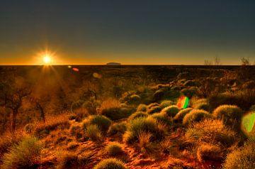 Zonsopgang in de Outback van