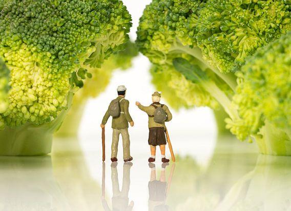 miniature figures walking on broccoli trees