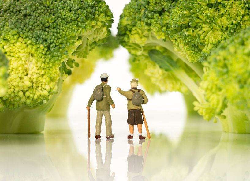 miniature figures walking on broccoli trees  van Compuinfoto .