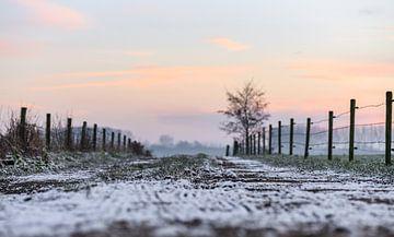 besneeuwde grond van Tania Perneel