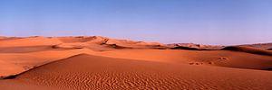 Sahara Three