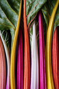 Kleurrijke Regenboog Snijbiet l Food Fotografie van Lizzy Komen
