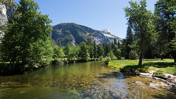 Yosemite Park sur Meneer Bos