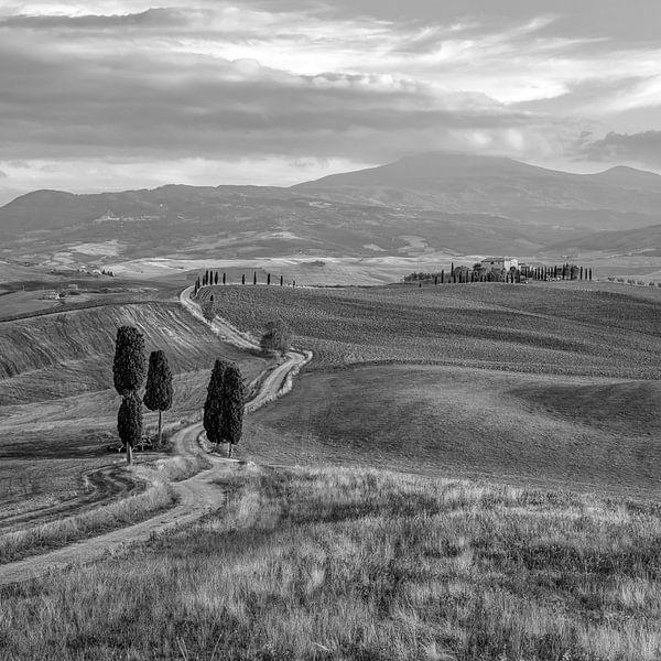 The Gladiator Road, Toscane, Zwart Wit, Vierkant van Teun Ruijters