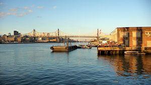 'Roosevelt bridge', New York  van