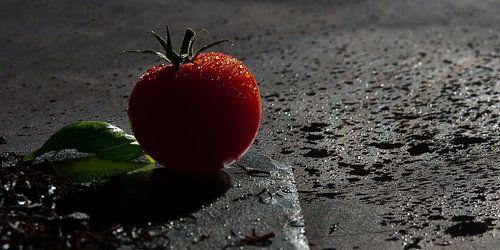 Tomaat van