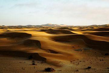 Golden hour in the Namib van Rinke van Brenkelen