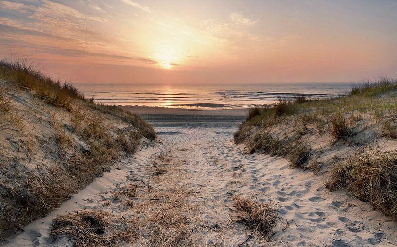 Texel strandopgang  van John Leeninga