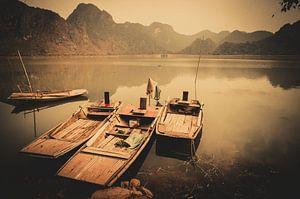 Het meer zonder visser
