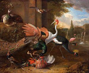 Een pauw die een haan aanvalt, Melchior d'Hondecoeter