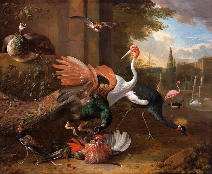 Een pauw die een haan aanvalt, Melchior d'Hondecoeter van Meesterlijcke Meesters