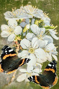 Spring aangeboden in de tuin  van Christine Nöhmeier