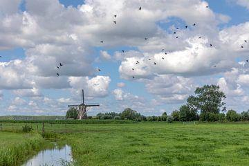 Hollands landschap van André Russcher