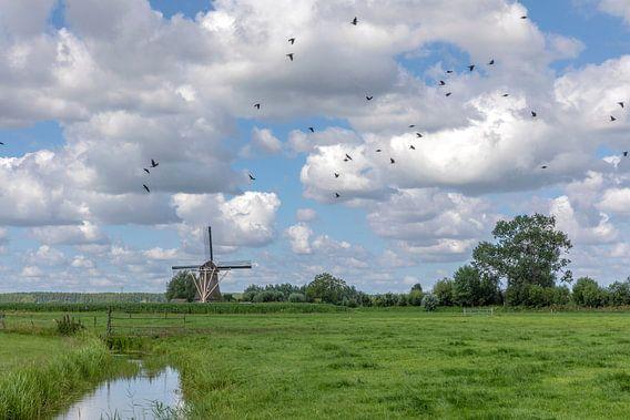 Hollands landschap met molen en wolkenlucht