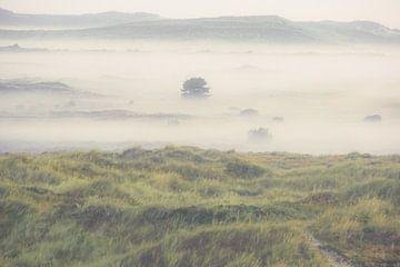 Terschelling im Nebel von Dirk van Egmond