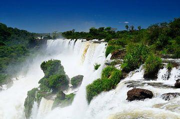 Iguaçu  waterval von Sjoerd van der Wal