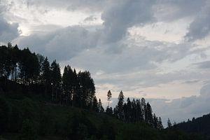 Schwarzwald bei Sonnenuntergang von Alexander Vlemminx