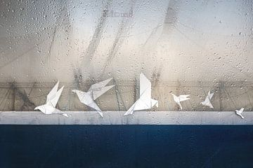 Tauben des Friedens, Roswitha Schleicher-Schwarz von 1x
