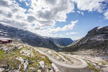 Naar Austdalsbreen, Noorwegen van Peter van Rooij