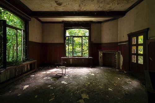 Altes und verlassenes Schloss. von Roman Robroek