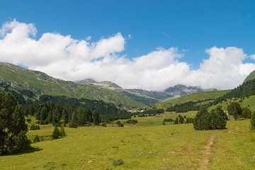 Wandelen in Acquacalda, Zwitserland von Peter Apers