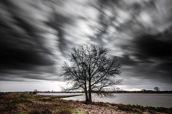 Stormachtig weer aan de rivieroever (Pannerden, Arnhem)