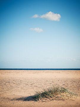 Sardinien - Costa del Sud von Alexander Voss