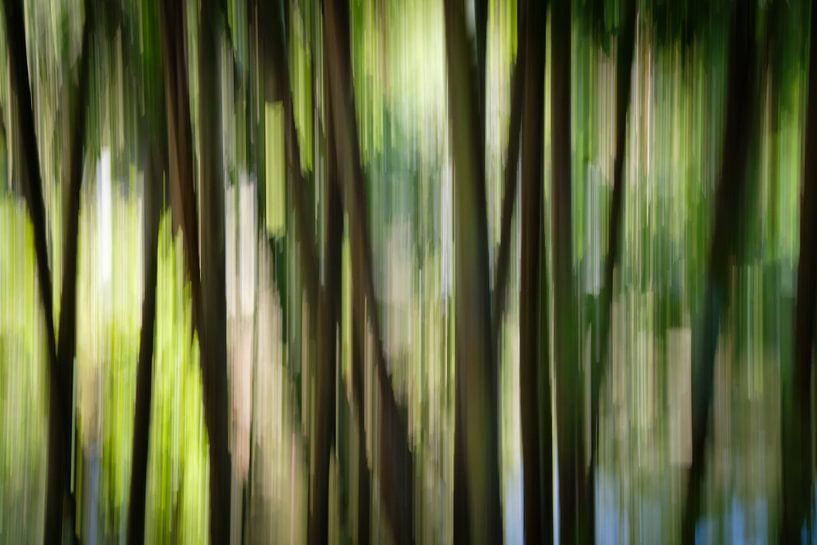 Abstract bos van Marco van den Arend