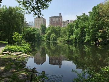The Pool at Central Park von Tim Scholtens