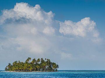 Insel in den Tropen von Peter Leenen