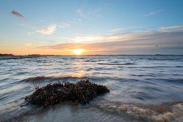 Schildmeer von Richard Gilissen