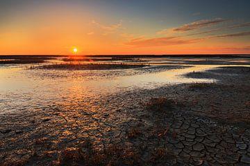 Oranje boven de Waddenzee sur Karla Leeftink